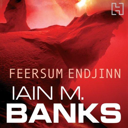 Feersum Endjinn Book Cover